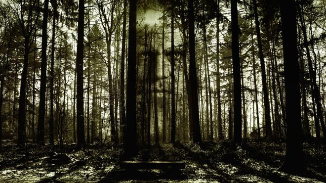 horror-2156302_960_720